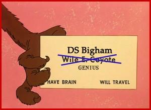 DS Bigham - Genius