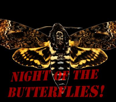 Night of the Butterflies!